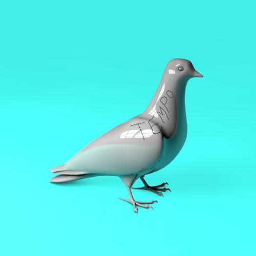 2015-07-21-codewordbirds-production18_864-b0ae0d7314601f83bd54e4dd816c92b2