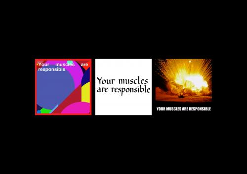 muscles-b67b29fd920b9e7e1aa19b700816adbb